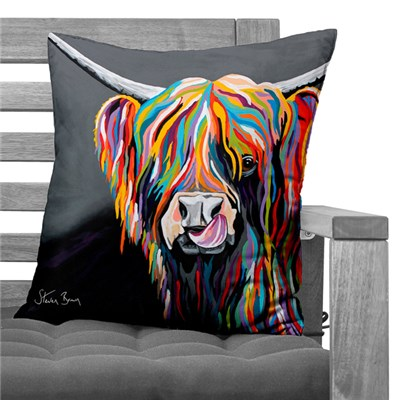Steven Brown Heather McCoo Soft Touch Cushion 45 x 45cm