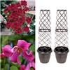 Pair Tower Pots and 2 Clematis Boulevard 9cm