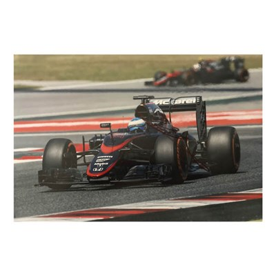 Fernando Alonso Action Photo Personally Signed