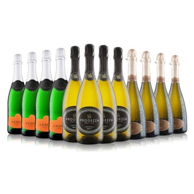 Virgin Wines 12-Bottle Prosecco and Fizz Case