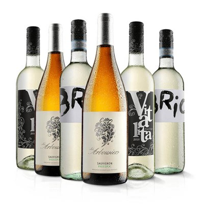 Virgin Wines Must Have White Wine Six Pack