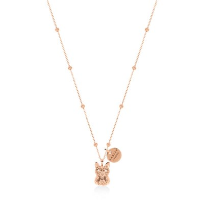 Radley Necklace Radley and Friends Charm