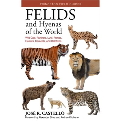 Felids and Hyenas of the World: Wildcats; Panthers; Lynx; Pumas; Ocelots; Caracals; and Relatives by Dr Jose R Castello ; Foreword by Andrew C Kitch
