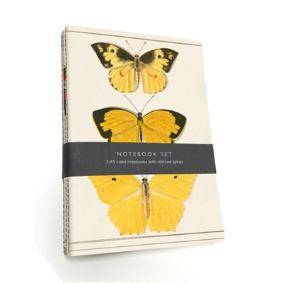 Butterfly Notebook Set: 3 A5 lined notebooks with stitched spines by With Oxford University Museum Of Natural History