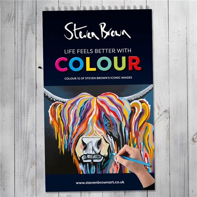 Steven Brown Colouring Book Volume 2
