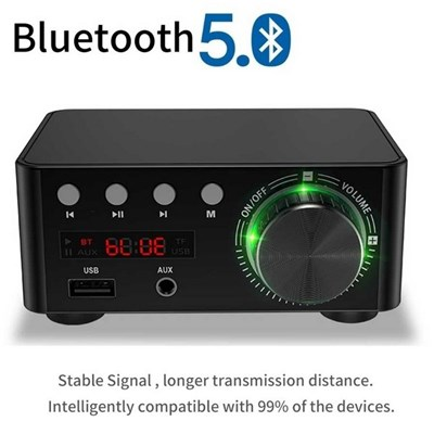 100Whifi Fever Grade Bluetooth 5.0 Small Digital Power Amplifier Supports U Disk Sd Card Rca Audio Input